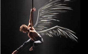 La Chute des Anges - Raphaëlle Boitel / Musiques